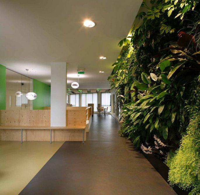 Environmental Office Design - Paris