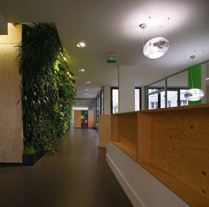 Green Office Design Using Natural Materials